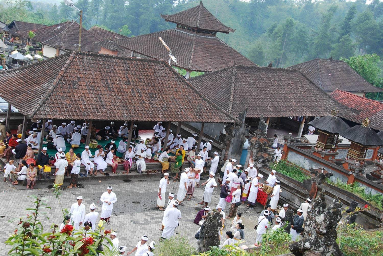 Bali 212