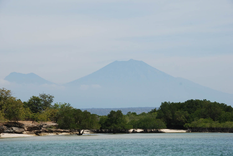 Bali 332