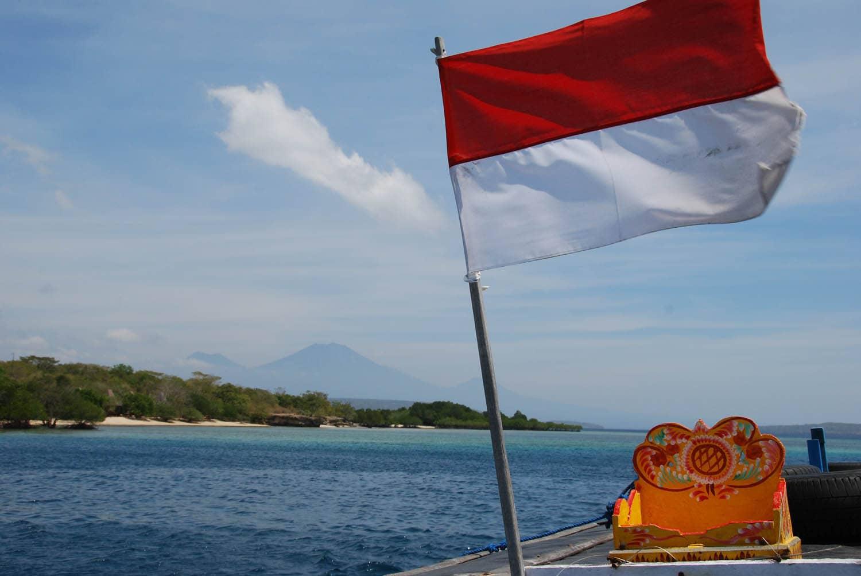 Bali 333