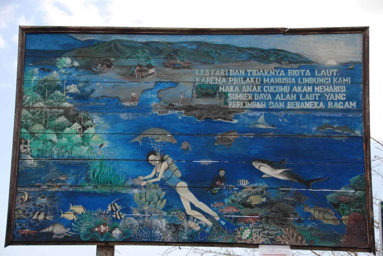Bali 409