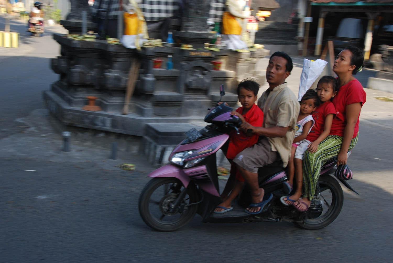 Bali 443