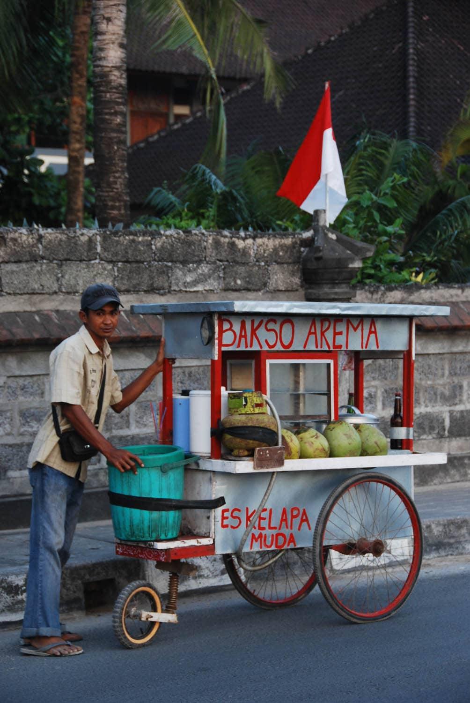 Bali 462