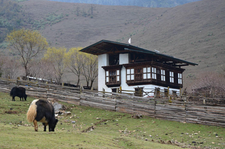 Bhoutan 2012_04 173