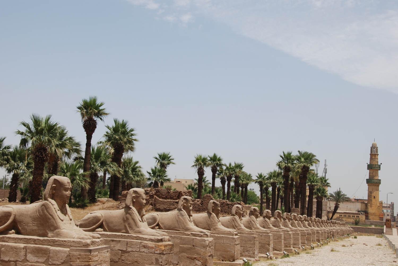 L'allé des sphinx entre Karnak et Louxor