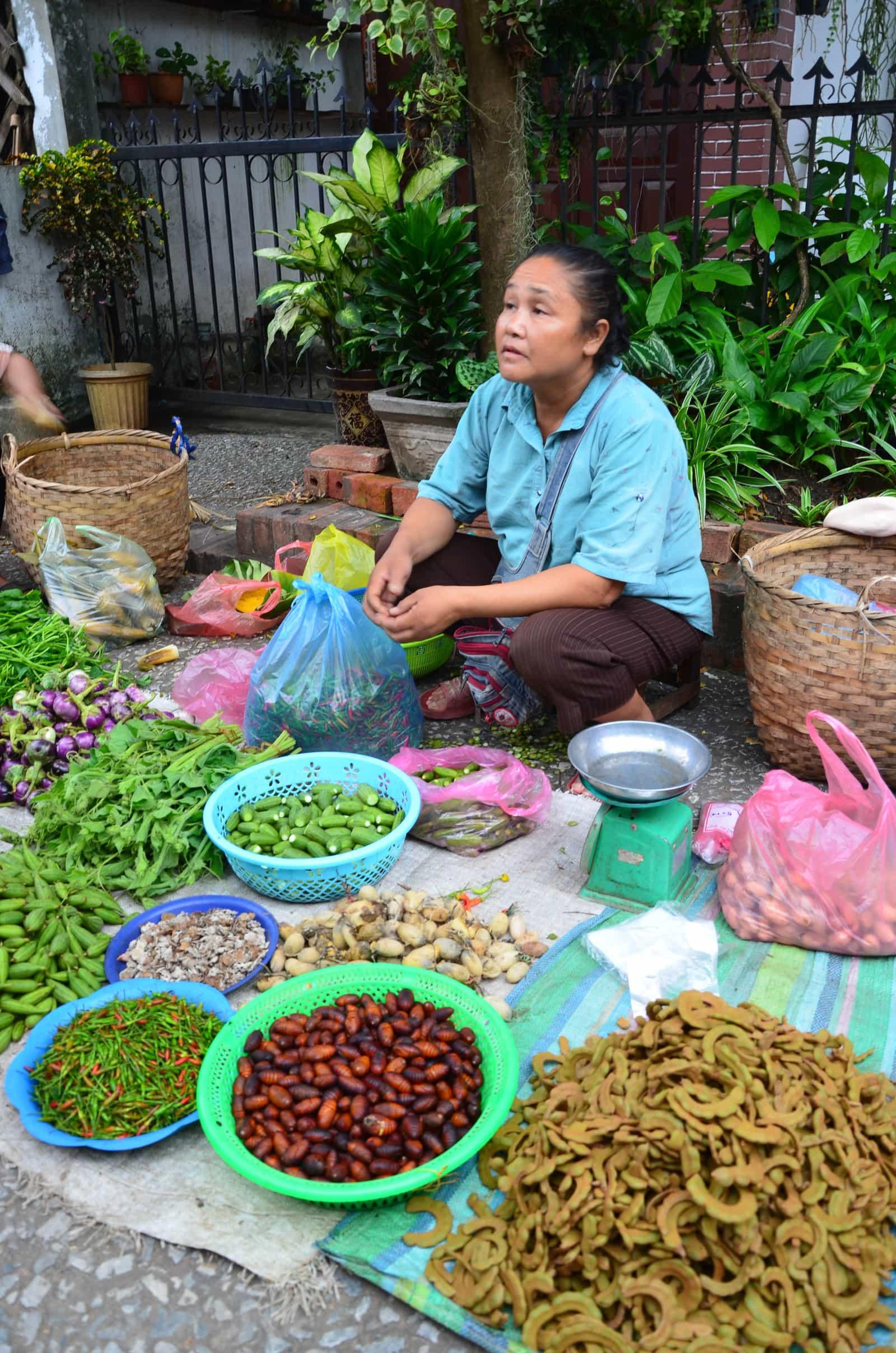 Laos 2018 : marché Luang Prabang